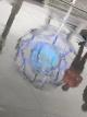 Ariane Koek - Bucky Ball